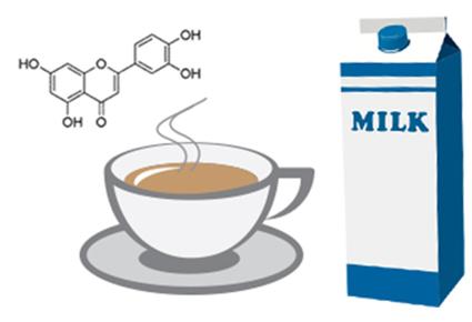 Если добавить молоко в чай, это снизит полезные свойства чая?