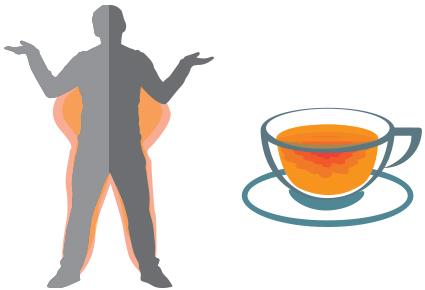 Способствует ли зеленый чай снижению веса?